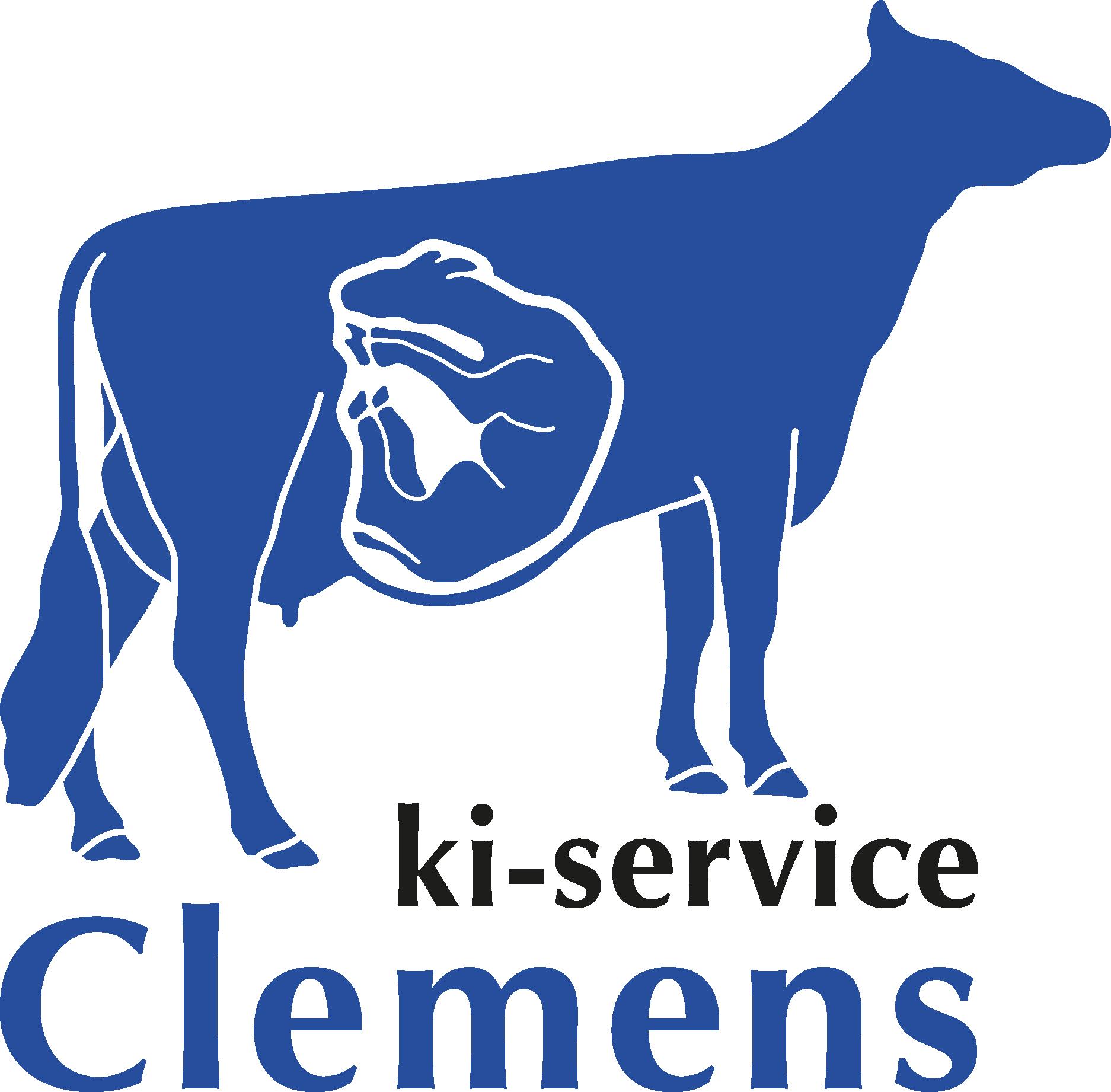 KI-Service Clemens